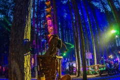 Noiseporn_ElectricForest2018-0172
