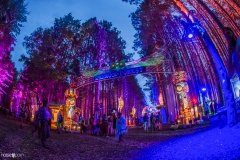 Noiseporn_ElectricForest2018-0175