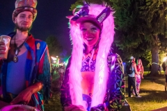 Noiseporn_ElectricForest2018-0194