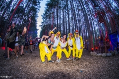 Noiseporn_ElectricForest2018-0453