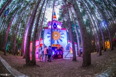 Noiseporn_ElectricForest2018-0465