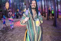 Noiseporn_ElectricForest2018-0467