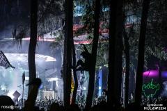 Noiseporn_Hulaween2017_AdamBentley_IMG_8538