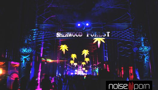 Electric Forest 2015 Photos