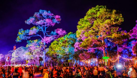 99 Arrested in Operation Planned Around Okeechobee Music Festival's Neighboring County