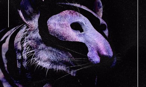"""Reid Speed Drops Wildly Diverse Remix EP For """"Animal"""""""