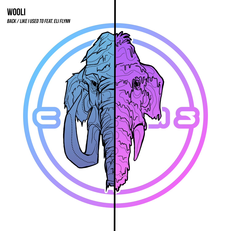 wooli-back-like-i-used-to-circus-records
