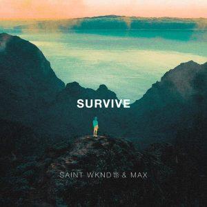 survive_pic