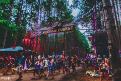 Noiseporn_ElectricForest_AngelicaDulany-7395