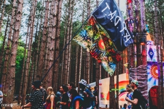Noiseporn_ElectricForest_AngelicaDulany-7400