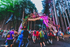 Noiseporn_ElectricForest_AngelicaDulany-7437