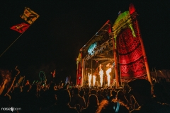 Noiseporn_ElectricForest_AngelicaDulany-8962