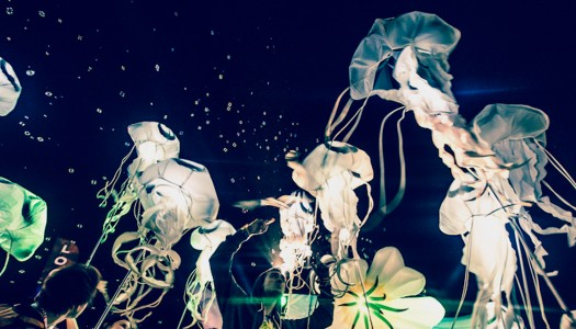 Brand Spotlight: Billion Jelly Bloom + Exclusive Interview