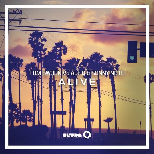 Tom Swoon