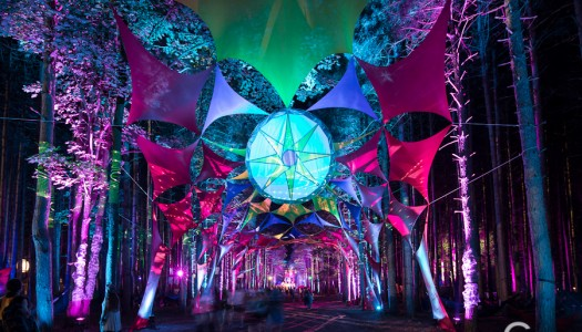 Creators of Electric Forest Announce New Camping Festival, Vertex