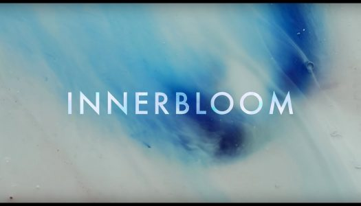 "RÜFÜS DU SOL Release ""Innerbloom"" Official Music Video"