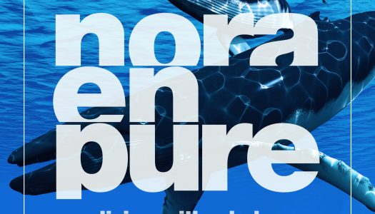 "Nora En Pure Releases Ambient Track ""Diving with Whales"""