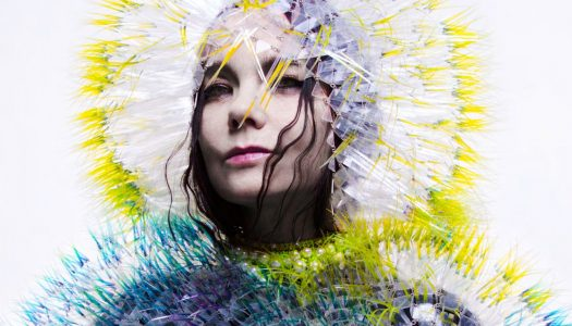 A Lovely Shade of Weird: A Night of Björk