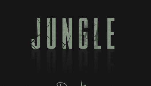 "Former Chris Brown Collaborator Daecolm Debuts ""Jungle"""