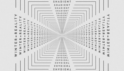 Shadient Releases 'winter=reality' EP on Mad Zoo