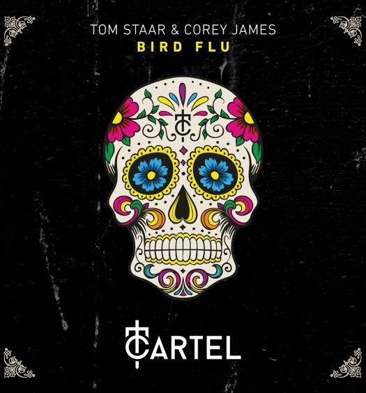 Tom Staar & Corey James - Bird Flu [Artwork]