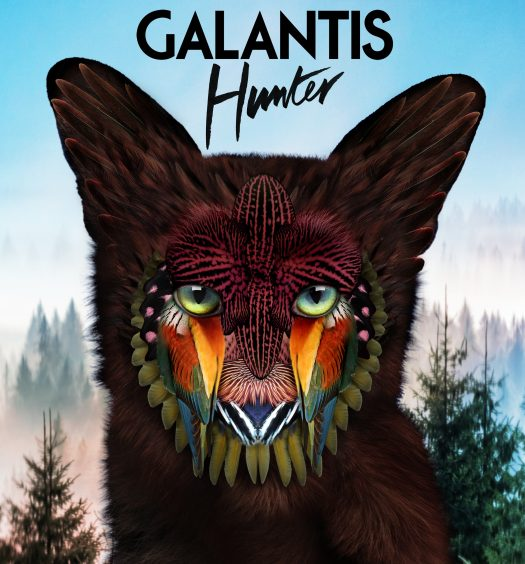 Galantis-Hunter-Web
