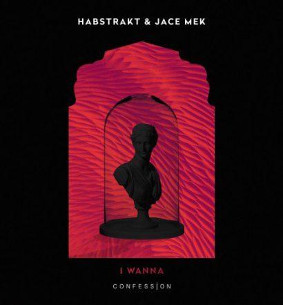 Habstrakt and Jace Mek - I Wanna