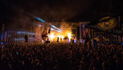 NP Exclusive Giveaway: Win Passes to Dancefestopia